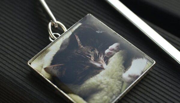 Zakładka do książki ze zdjęciem kotka - na zamówienie